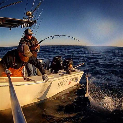 charter boat fishing videos sport fishing sports news videos images websites