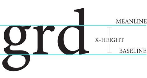 typography x height typography scale perspective