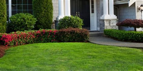 Landscape Lighting Gainesville Fl 3 Gainesville Lawn Tips To Keep A Defined Bed Edge The