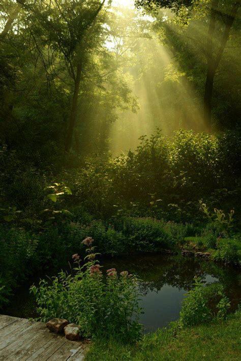 beautiful nature the 30 most beautiful nature photography nature
