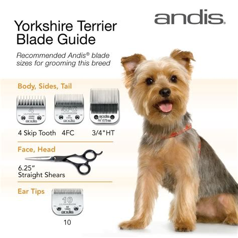yorkie hair cut chart clipper blades for grooming the yorkshire terrier hope