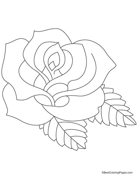 coloring sheet of rose rose coloring pages 2
