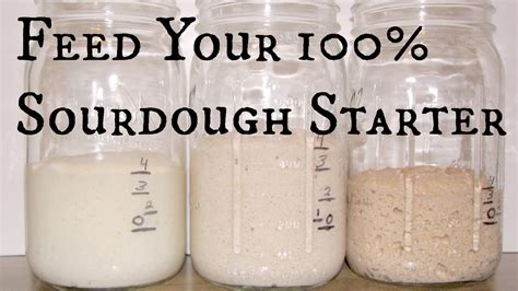 90 hydration sourdough feed your 100 hydration sourdough starter