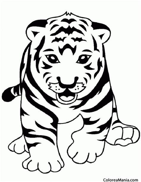 imagenes para pintar tigre colorear tigre de frente animales de la selva dibujo