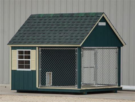 dog kennels  sale provide  year  home   dog