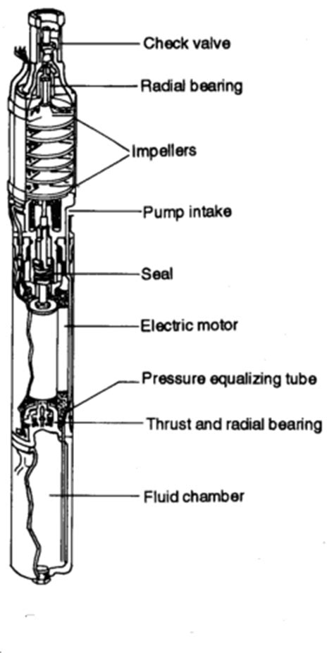 Pompa Celup Tidak Berputar memahami pompa benam submersible