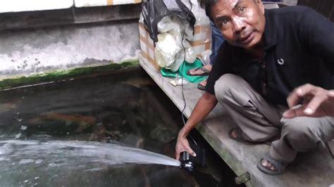Pompa Oksigen Akuarium alat pompa oksigen aquarium ikan