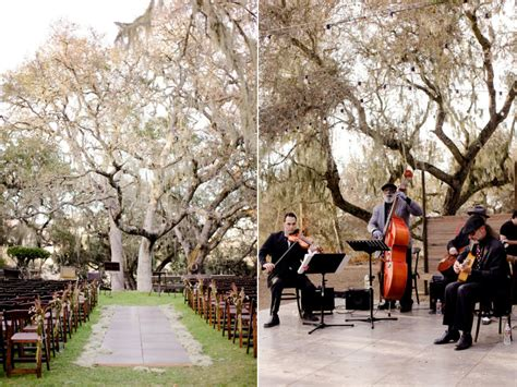 Wedding Ceremony Tree by Outdoor Wedding Ceremony Birch Tree Onewed