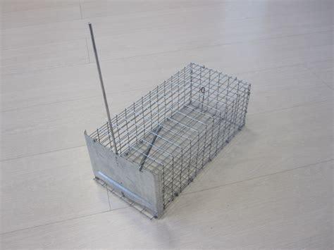 gabbia ratti ultrasuoni e gabbie per la cattura di topi e ratti