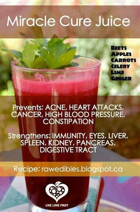 Beet Juice Recipe For Detox by Beet Juice Healthydish Facts