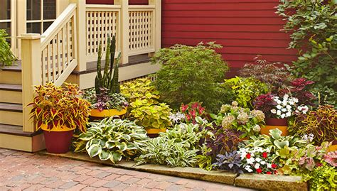 Japanese House Plants by Landscaping Ideas Shady Corner