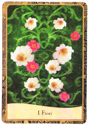 carte fiori la clownessa le carte della clownessa