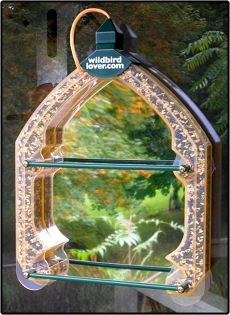 Window Bird Feeders With Mirror one way mirror window bird feeder window bird feeders