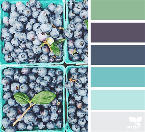 design seeds berry hues design seeds