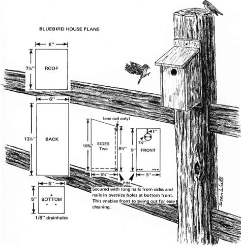 How To Build A Bluebird House Plans Garden S Chi March 2012