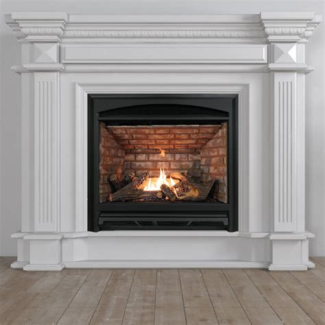 Gas Fireplace Heaters Archgard Industries Ltd
