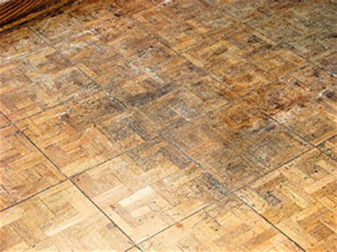 Flooring Buffalo Ny by Hardwood Flooring Buffalo Ny Image Mag