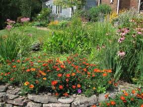 backyard butterfly garden with border the