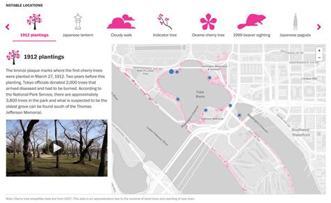 washington dc map tidal basin learn more about the cherry blossoms around the tidal