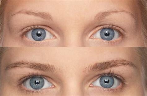 Eyebrows Treatment Paket 2 m2brows eyebrows growth 2x5ml m2brows 6 months treatment m2beaute beautil