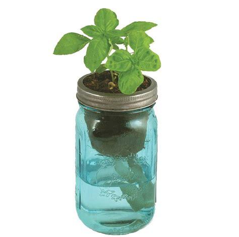 herb garden   jar    boys room