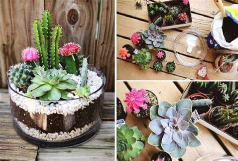 Pinterest Garden Ideas Pot Plants Diy Garden Ideas Pinterest