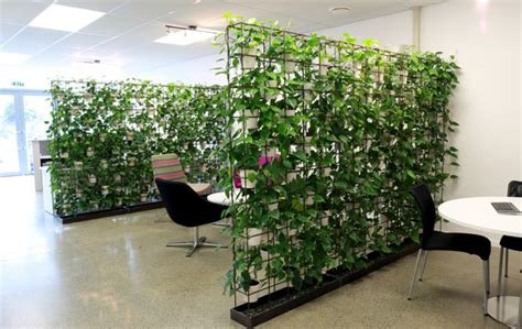 interior plant wall cool office fitouts google search pinteres