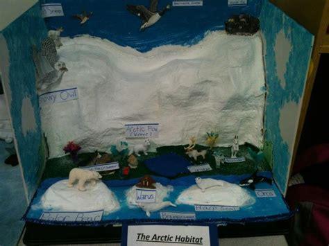 K 3d Polar Kid arctic habitat classroom kindergarten kid image search and for