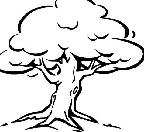 gambar mewarnai pohon gambar mewarnai lucu