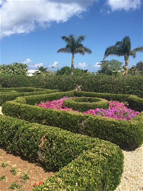 Botanical Gardens Bermuda Bermuda Botanical Gardens Paget Parish Top Tips Before You Go Tripadvisor