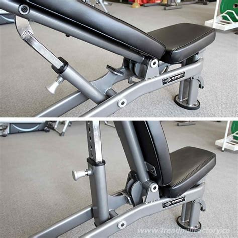 multi bench element multi adjustable bench homefit