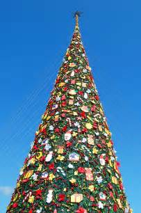 quot giant christmas tree in palawan philippines quot by