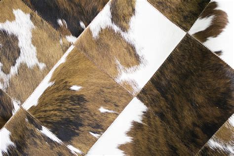 are cowhide rugs durable 8 common misconceptions about cowhide rugs cowhide outlet