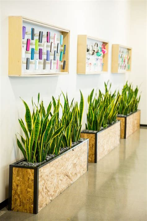 office plant decoration kl custom planter boxes for lobby of corporate office made by
