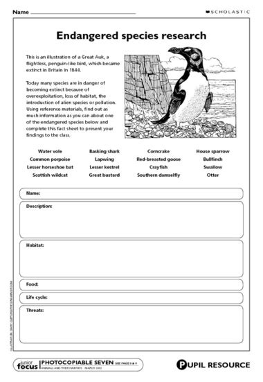 Endangered Species Worksheet by 13 Best Images Of Endangered Animals Worksheets