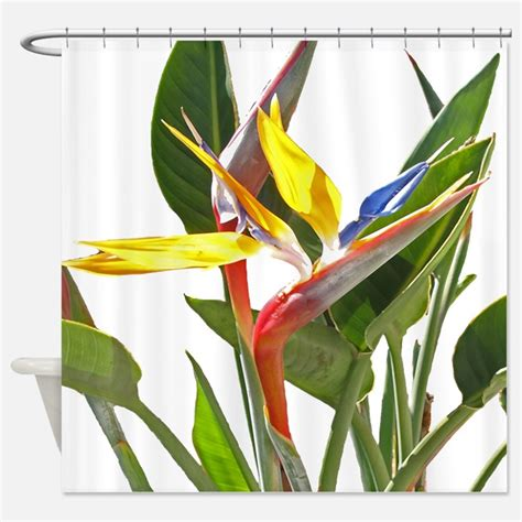 bird of paradise curtains bird of paradise shower curtains bird of paradise fabric