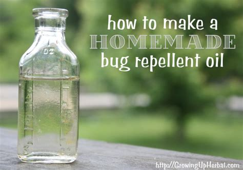 how to repel bed bugs how to make homemade bug repellent