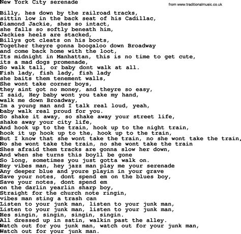 song nyc bruce springsteen song new york city serenade lyrics