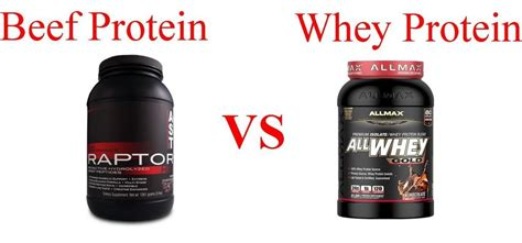 creatine vs protein beef protein vs whey protein supplement reviews