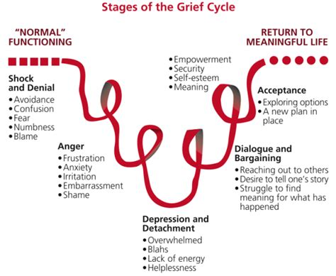cycle of grief diagram the grieving cycle and relationship 171 focus