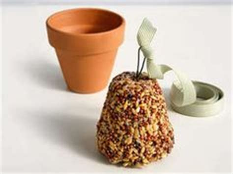 how to make seed bells for parrots for the birds on bird feeders birds and seeds