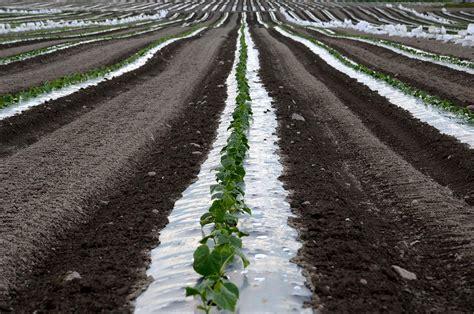 maa piment 228 228 kuun hallituksen halutaan kannattelevan maataloutta pahimman