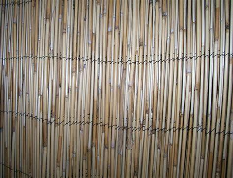 bamboo fencing bamboo habitat