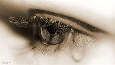 Shedding A Tear by Everyday Is A New Day