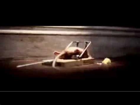 nolans cheddar mouse commercial hilarious commercial mouse trap survivor nolan s cheddar cheese youtube