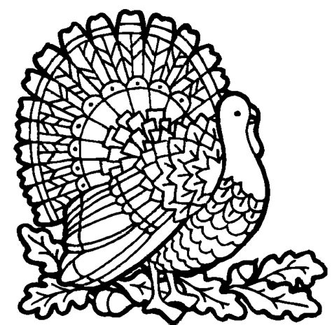 turkey coloring pages coloring pages to print turkey coloring free animal coloring pages sheets turkey