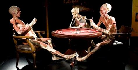 the open boat did the oiler die cosa vedere a milano anche nel weekend mostra body worlds