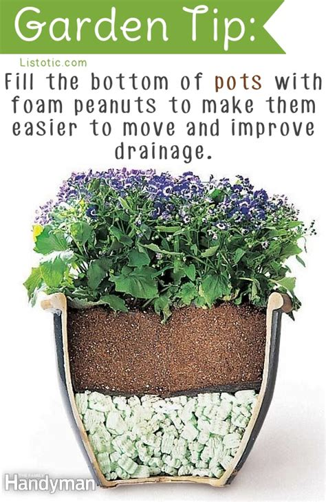 gardening tips and ideas 20 clever gardening tips and ideas that are just