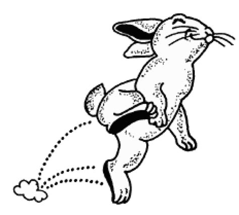 hopping bunny coloring page espy s coloring page