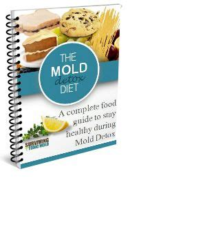 Mold Detox Takes 6 Months by 1000 Ideas About Detox Diet Plan On Detox